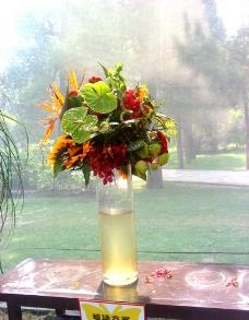 花瓶花瓣图片