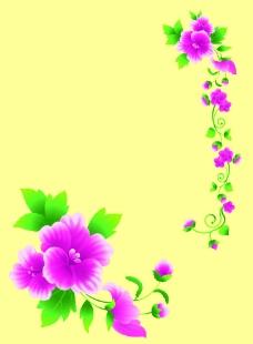 粉色小花圖片