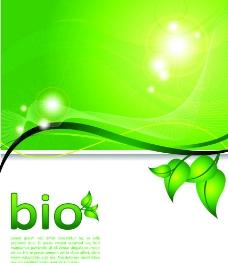 绿叶绿色背景图片