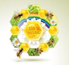 蜜蜂和蜂蜜标签图片