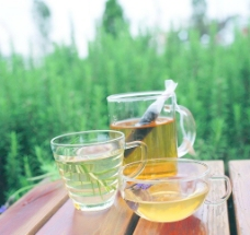 花茶(非高清)图片
