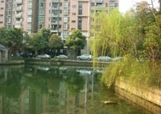 小区风景图片
