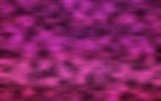 紫色绒絮图片