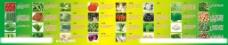 蔬菜的功能图片