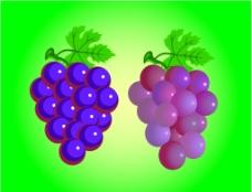 水果萄萄PSD素材图片