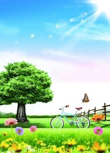 大樹自然清新圖片