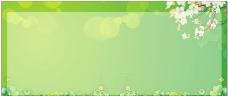 绿意(绿色宣传栏底纹 )图片