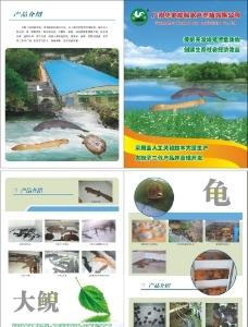 珍稀动物养殖封面图片