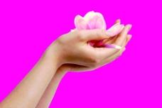 手 花瓣图片