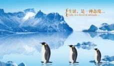 冰山 企鹅图片