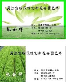 绿化名片图片