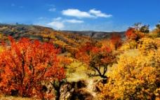 自然风景图图片