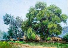 村口的树林图片