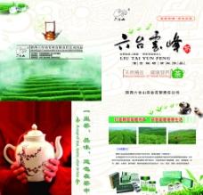 六台云峰茶图片