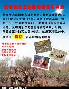 枣林湾海报图片