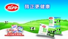 龙丹袋奶广告图片