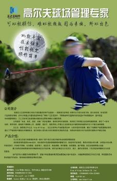 高尔夫球场管理专家海报设计图片