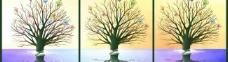 无框画树图片