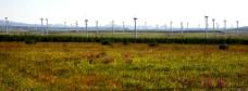 风电厂景图片