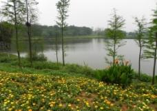 松山湖图片