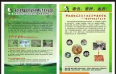 畜牧业传单图片