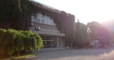 南开大学 新阶图片
