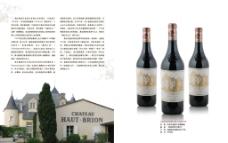 拉菲庄干红葡萄酒图片