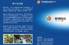 海南椰潮食品图片