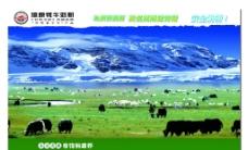牛奶 牛 草地图片