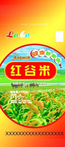 红谷米图片