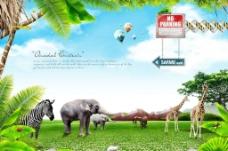 大草原野生动物图片