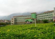 肇庆学院图片