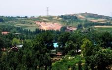 山上的农田图片