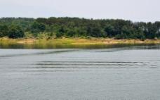 燕子湖的水波图片