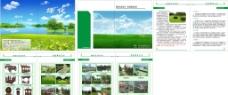 绿色书图片
