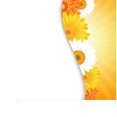 鲜花花瓣花边背景05—矢量素材