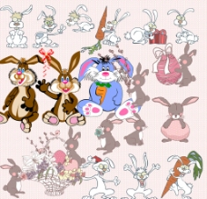 兔子集圖片
