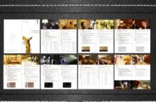 五星级酒店VIP手册设计图片