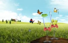蝴蝶杯子草地风景图图片