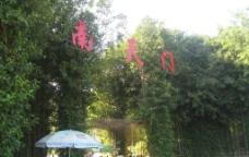 海南 南天门图片